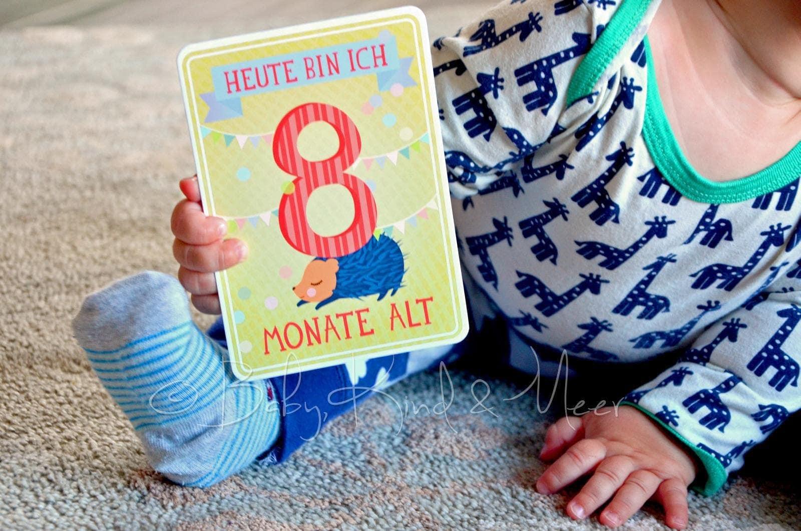 8 monate tom tipps f r eltern baby kind und meer. Black Bedroom Furniture Sets. Home Design Ideas