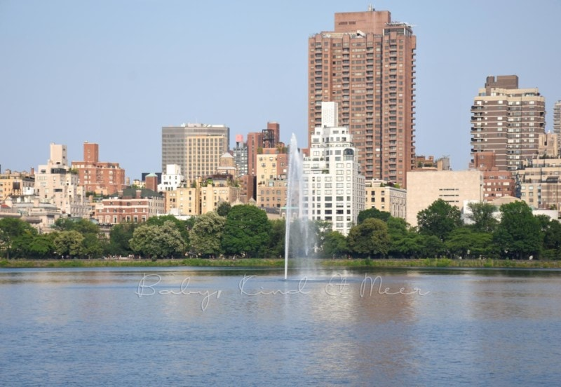 Central Park New York (3)