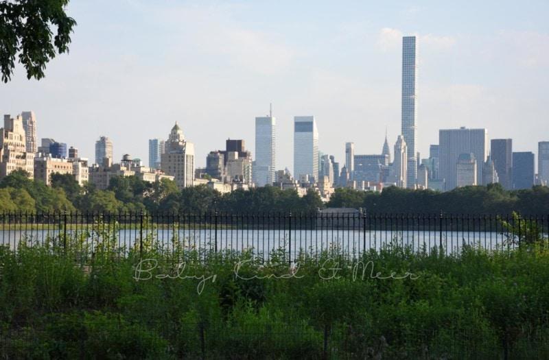 Central Park New York (7)