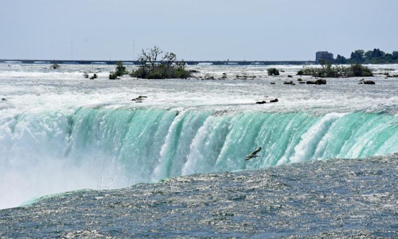 Niagarafaelle (31)