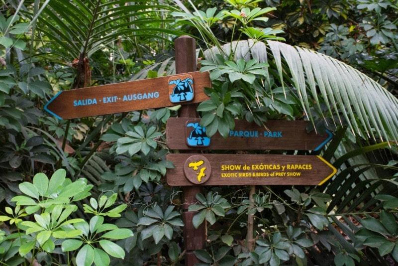 palmitos-park-gran-canaria-10
