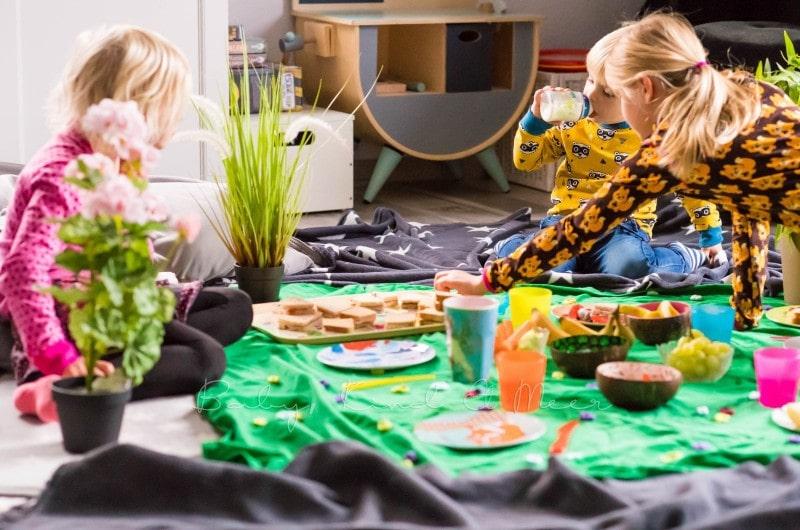 Picknick Im Wohnzimmer 1