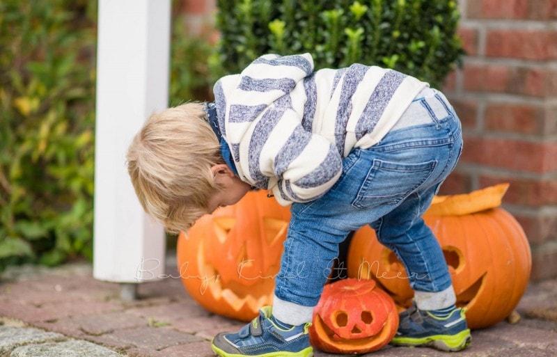 Halloween Kuerbisse 1