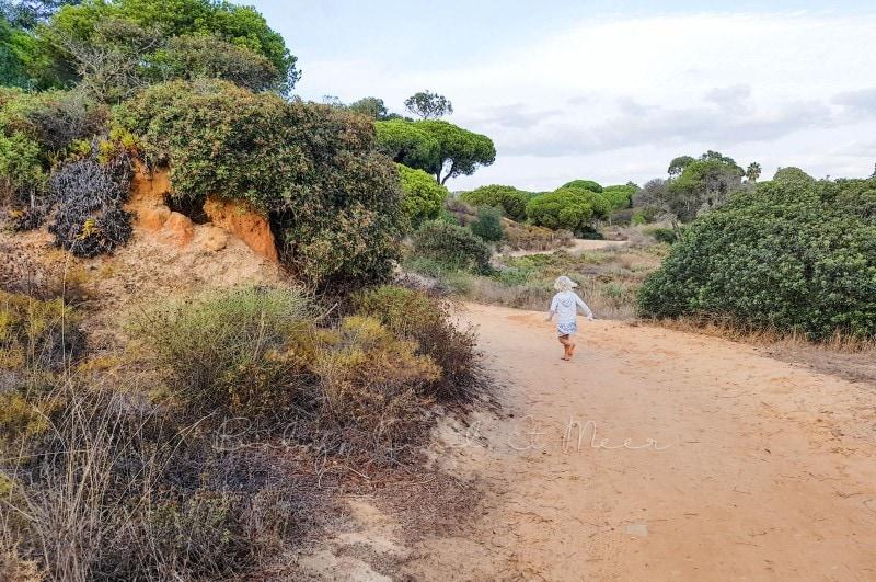 Naturschutzgebiet Ria Formosa