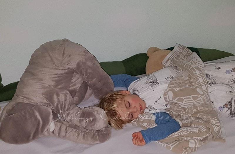 Toms neues Bett 1