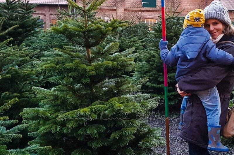 Weihnachtsbaumkauf 1