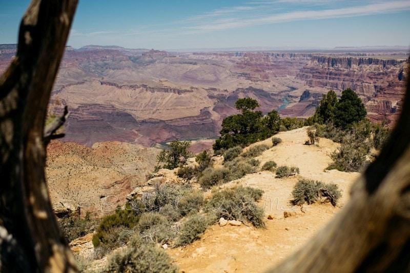 20180425 Tag 5 Grand Canyon 7