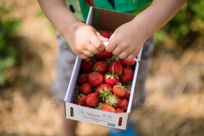 Erdbeermarmelade selber machen 10