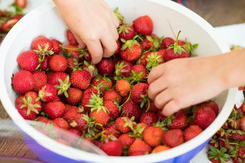 Erdbeermarmelade selber machen 13