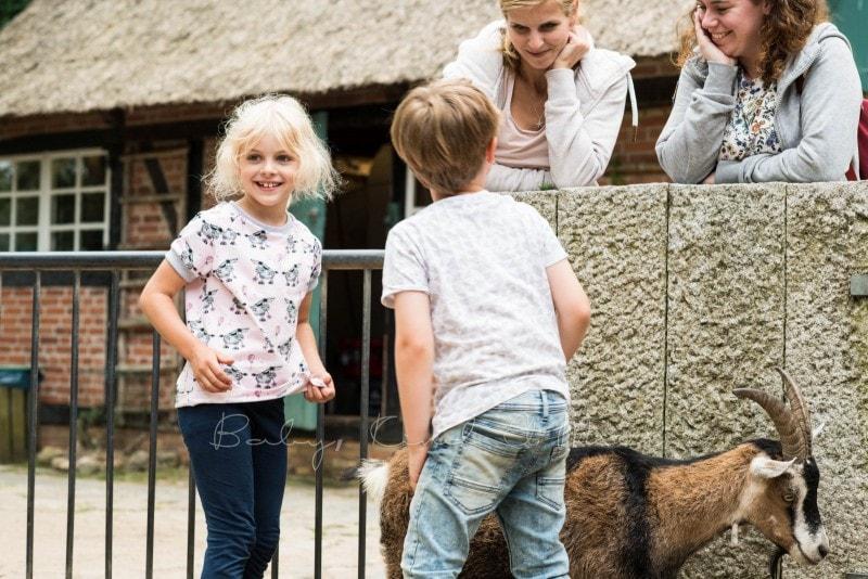 Tierpark Neumuenster 11