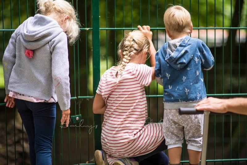 Tierpark Neumuenster 3