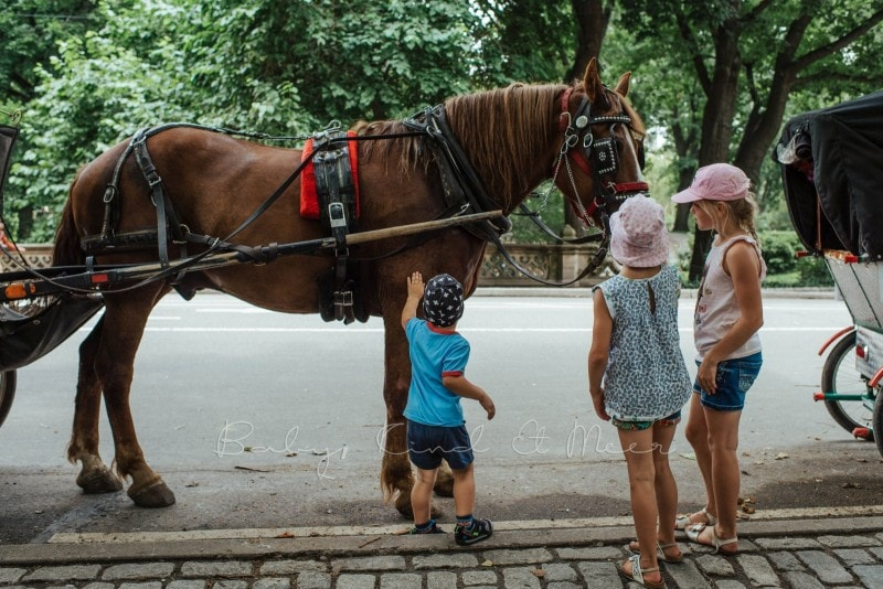 New York mit Kindern 111