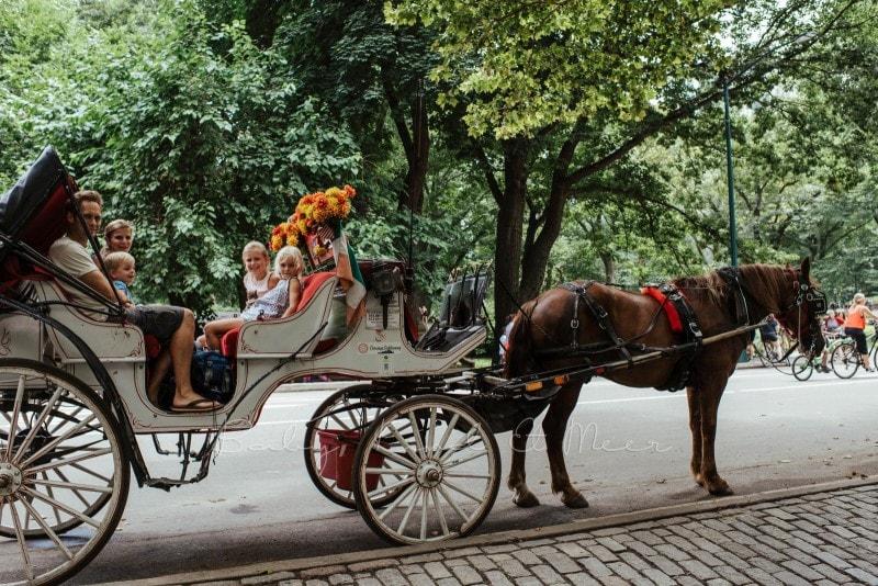 New York mit Kindern 113