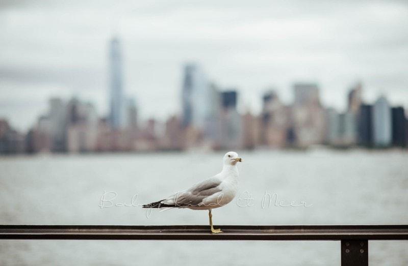 New York mit Kindern 25