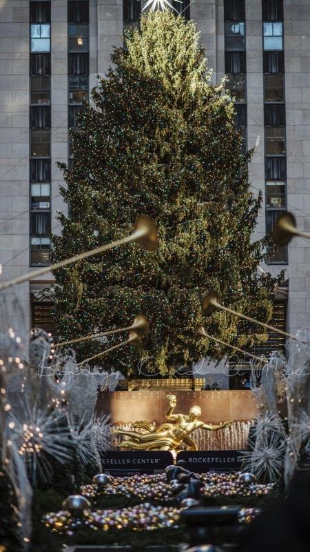 Weihnachten in New York 25