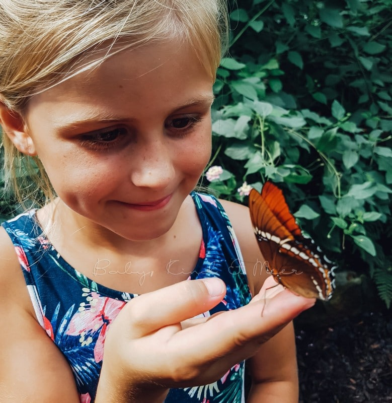 Natur mit Kindern 1
