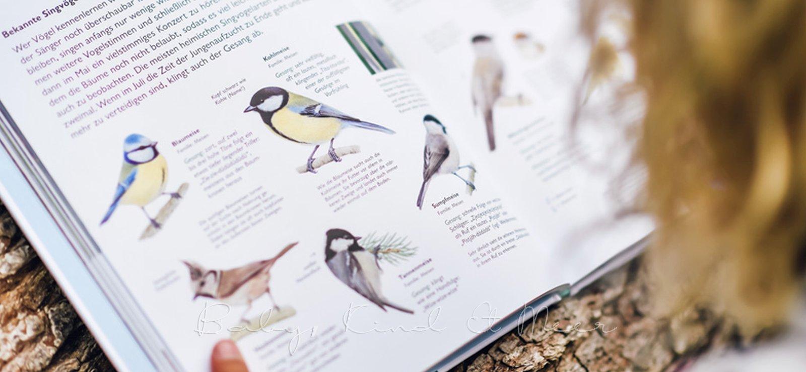 WAWRA Naturbuch Buchtipp