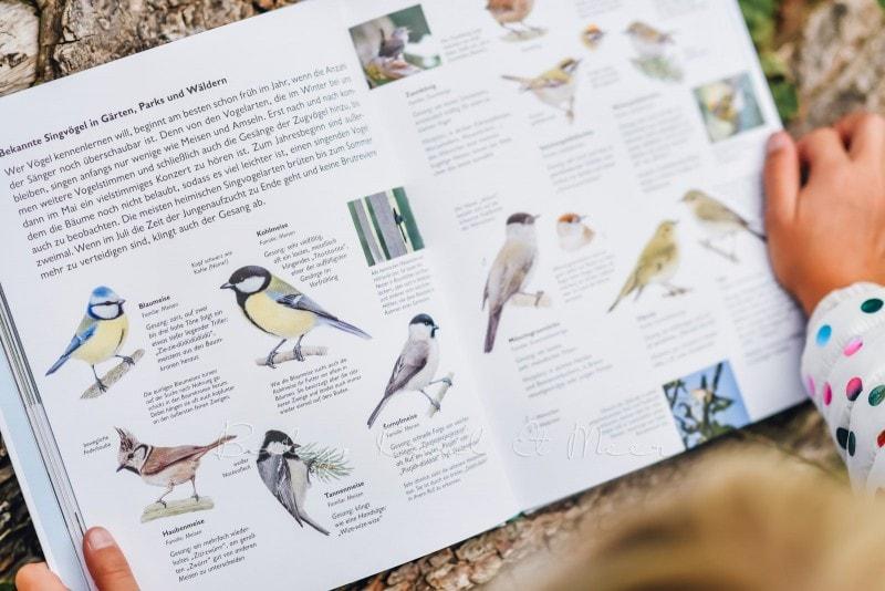 Wawra Naturbuch 5
