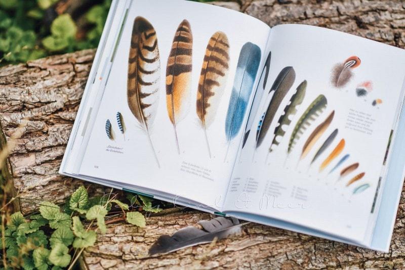 Wawra Naturbuch 7
