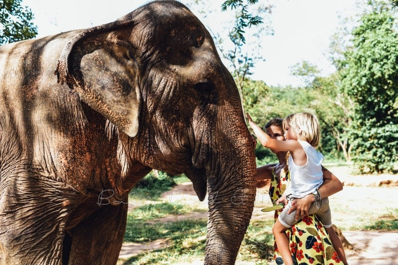 Thailand Koh Samui mit Kindern 228