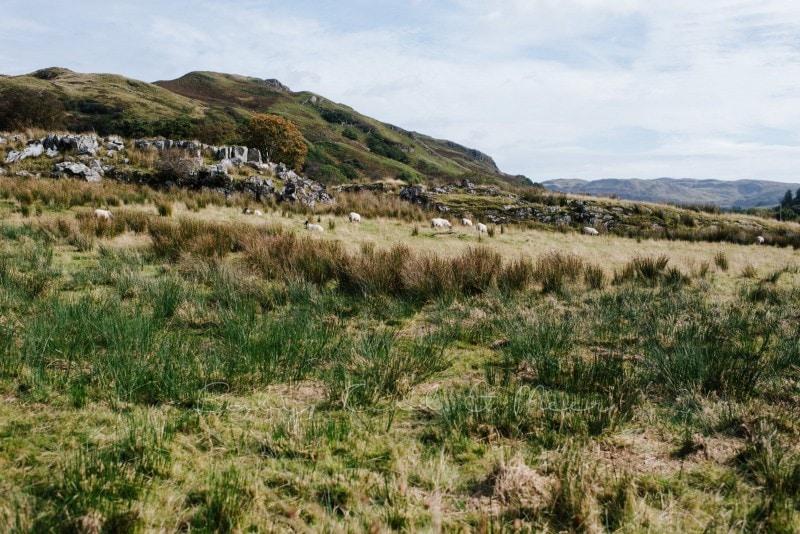 Rundreise durch Schottland 256