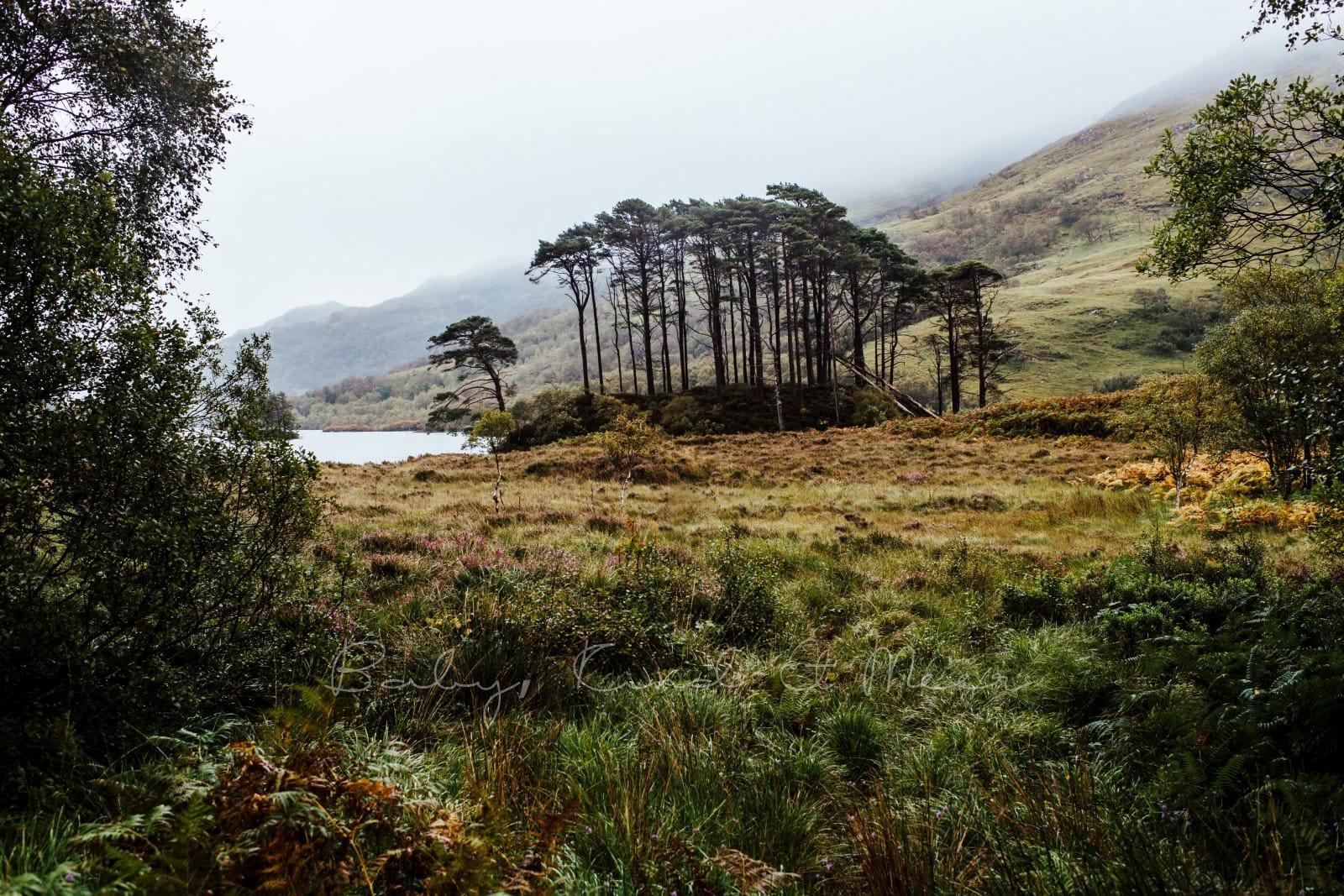 Rundreise durch Schottland 279