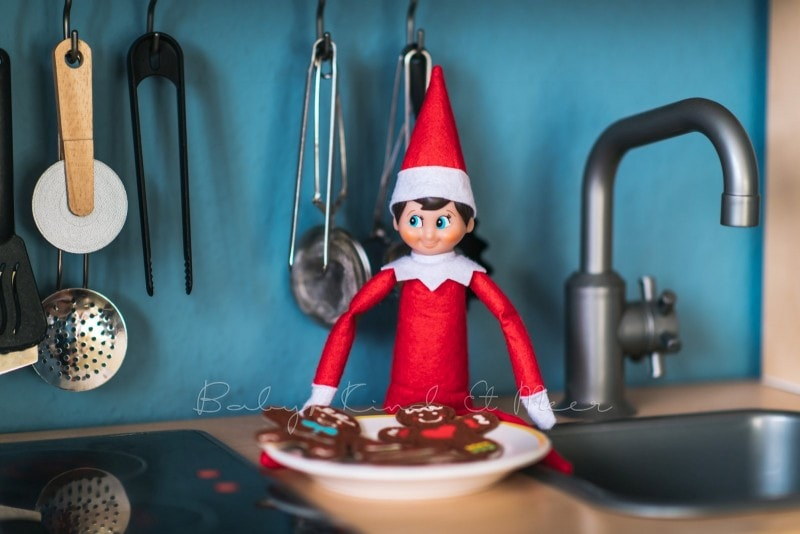 The Elf on the Shelf 14