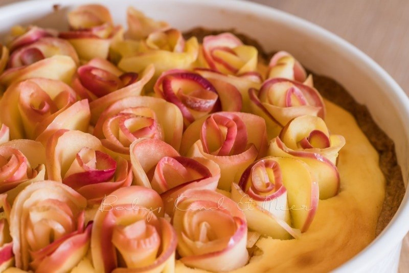 Apfelkuchen Kaesekuchen Apfelrosen 7