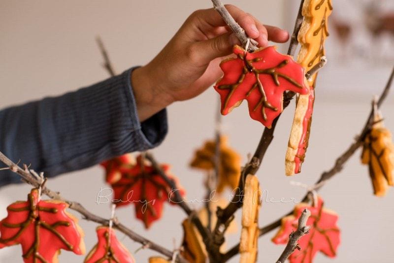 Rezept Herbst Keks Baum babykindundmeer 16